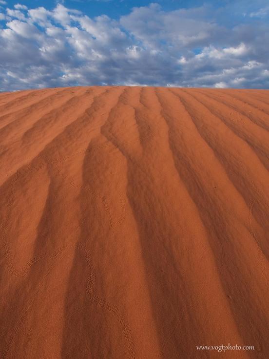 20100710-Desert Tracks-01-w