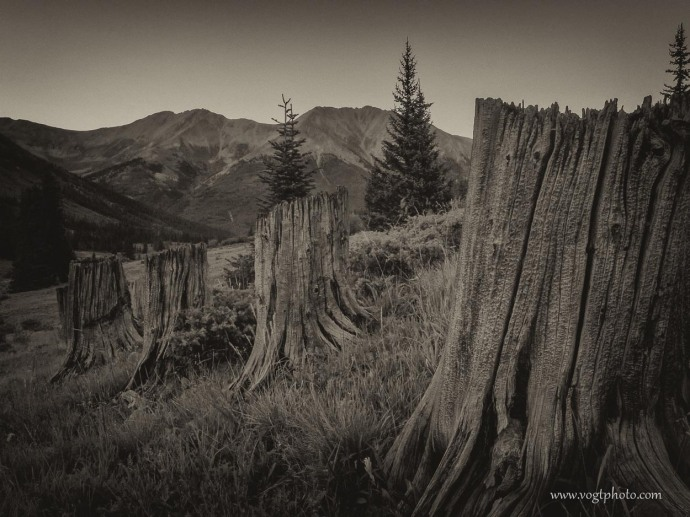 20100814-Logging Landmarks-01-w
