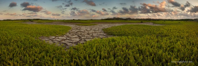 20130414-Salt Wort Fields-01-w