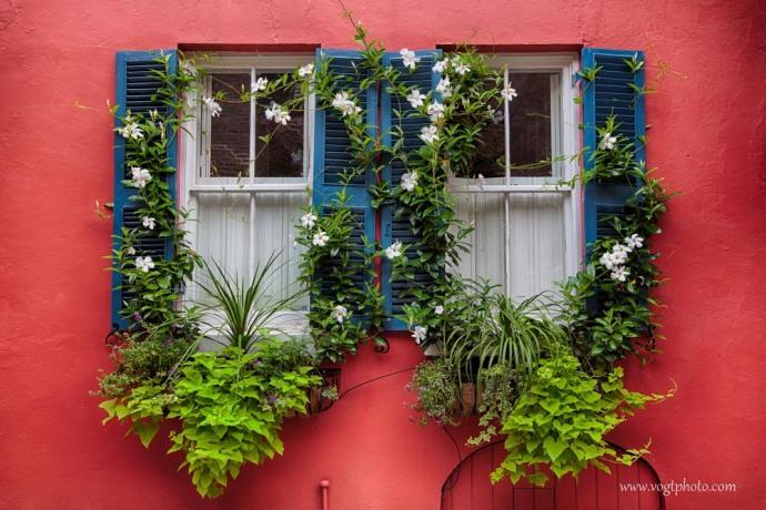 20130824-Charleston Window-02-w