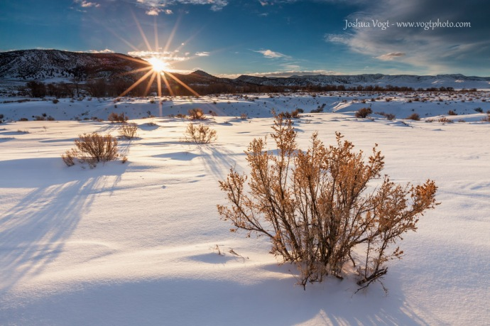 20140111-Sage and Sunstar - w